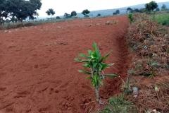 rwanda21